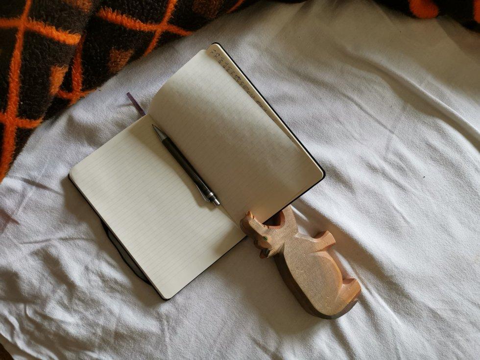 Нели Станева дневник